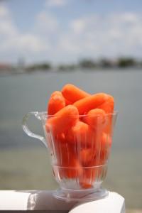 dreamstimefree_189656 Carrots