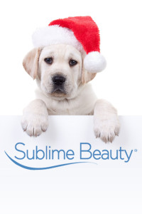 Puppy and Christmas hat logo white